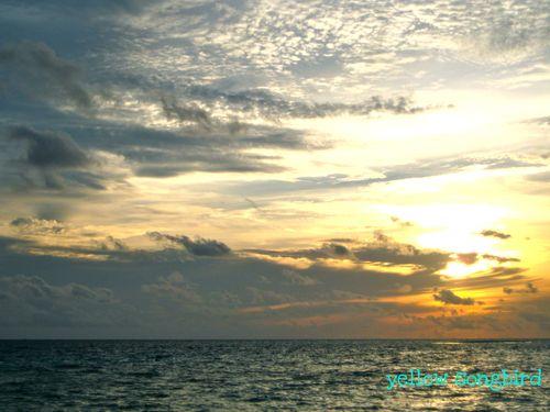 Kim--sunset