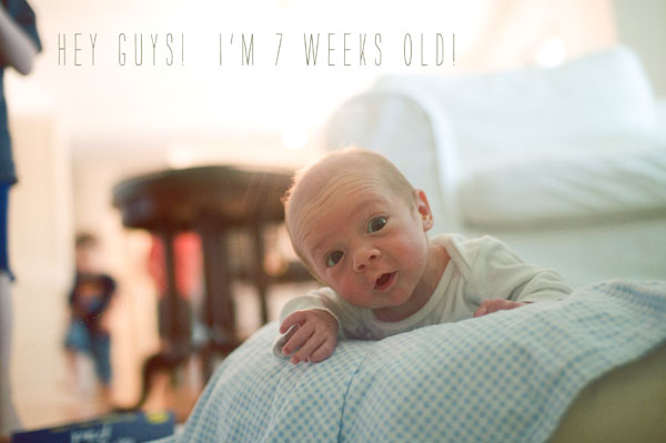 Asher7weeks-blog